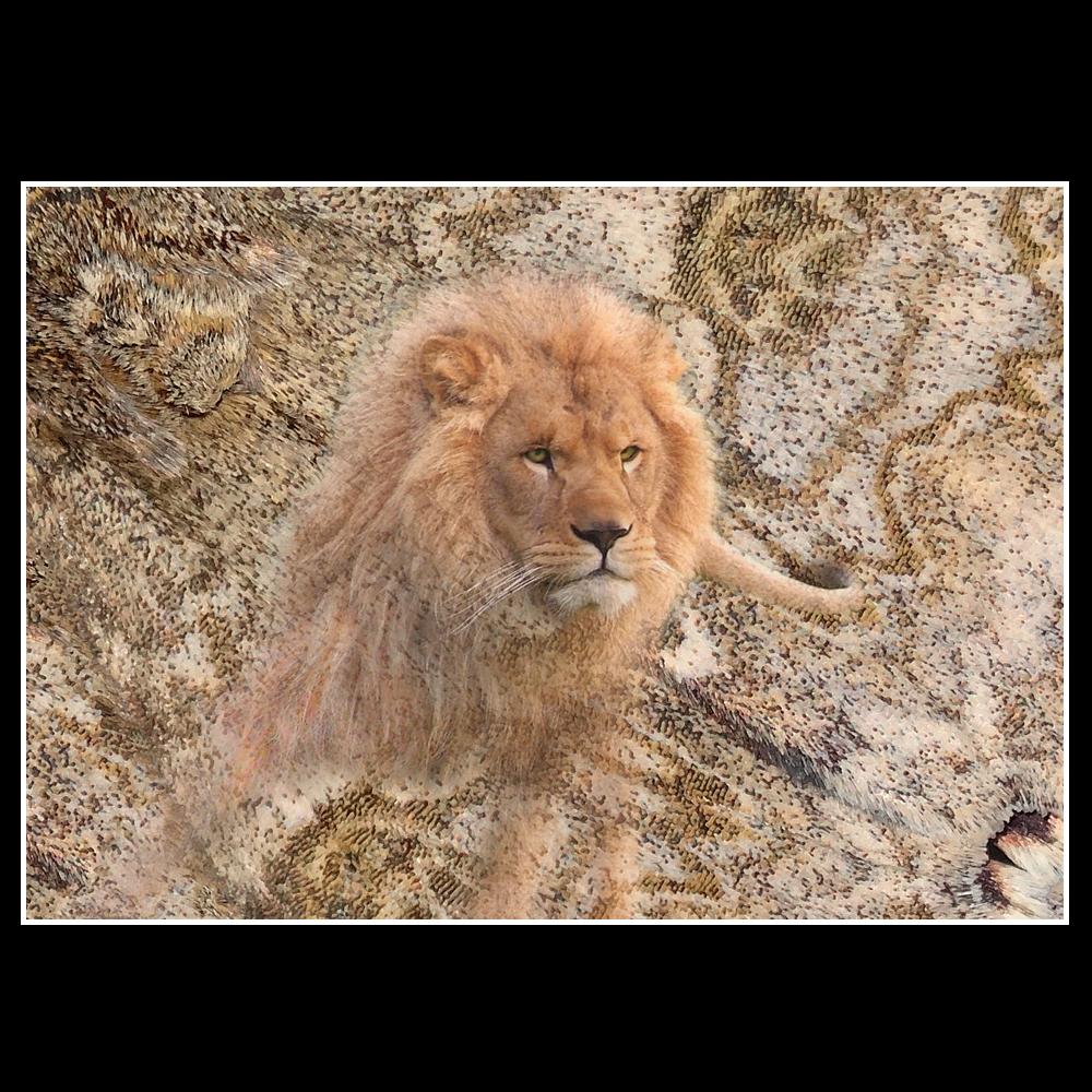 Lion au papillon