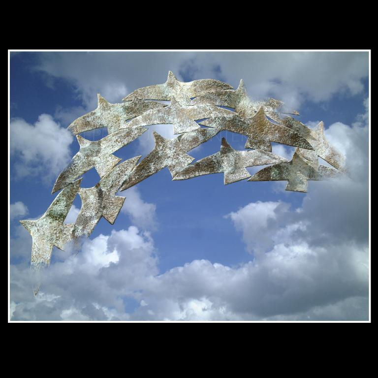 Oiseaux en Arc en Ciel