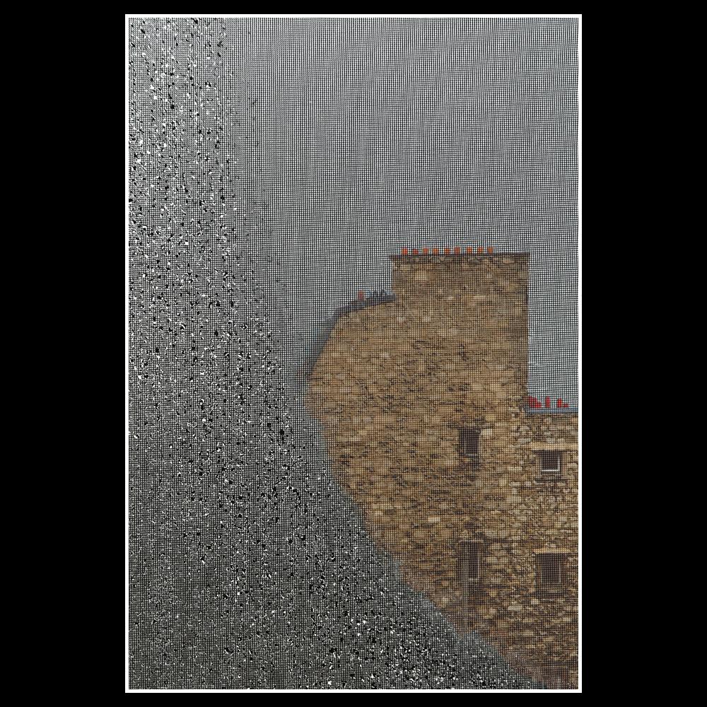 Pluie sur la cour