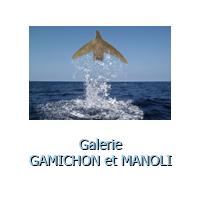 Bouton galerie gamichon et manoli